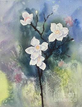 Spring by Yohana Knobloch