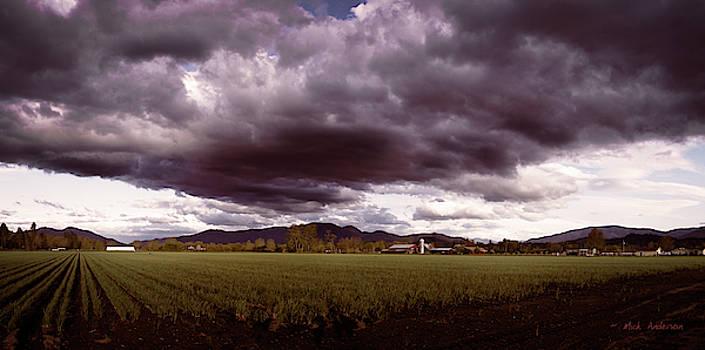 Springtime Farmland by Mick Anderson