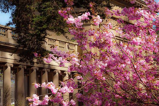 Springtime Memories by Bonnie Follett