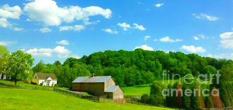 Springtime Softness On The Farm In Frederick Maryland by Debra Lynch