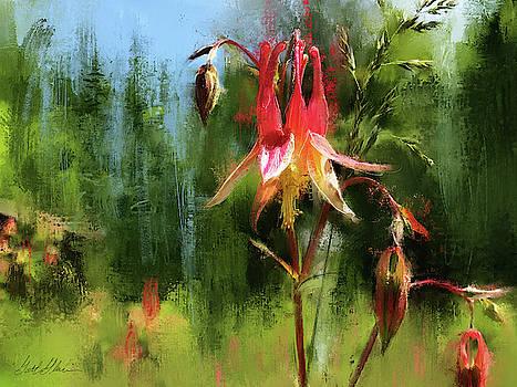 Spruce Forest Columbine Flower by Garth Glazier