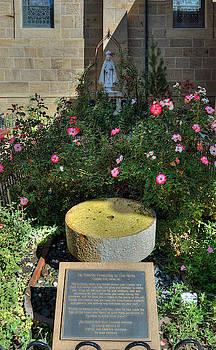 St. Francis Bird Bath Fountain by Darin Williams