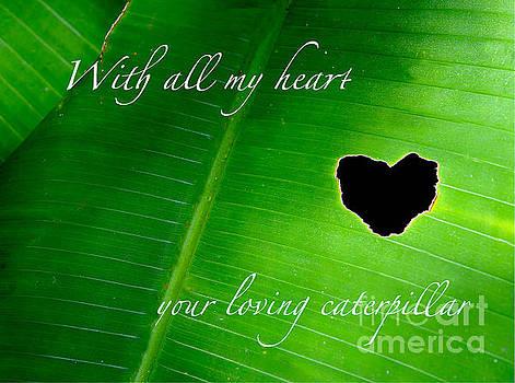 St Valentine heart design by Inessa Williams