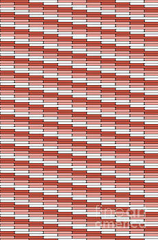 Staggered Oblong Rounded Lines Pantone Living Coral Illustration by Melissa Fague