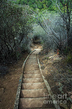 Stairs to nowhere  by Micah May
