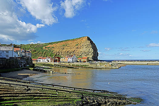 Staithes Harbour and Cowbar Nab by Rod Johnson