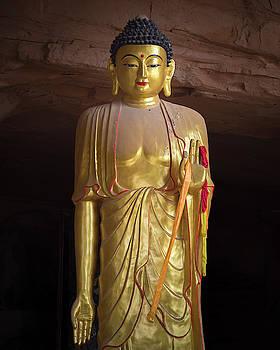 Standing Buddha Hall Mati Si Temple Zhangye Gansu China by Adam Rainoff