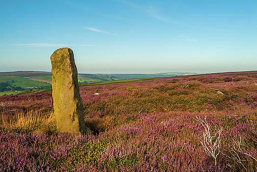 David Ross - Standing Stone, Danby, Yorkshire