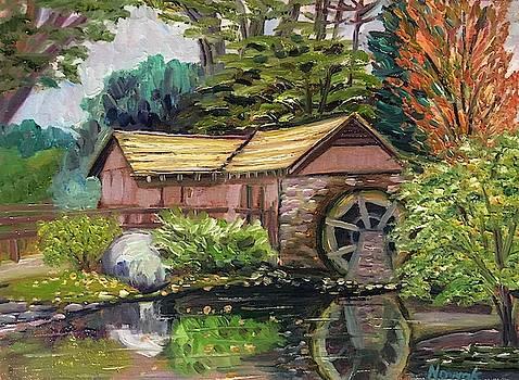 Stanley Park Water Wheel by Richard Nowak
