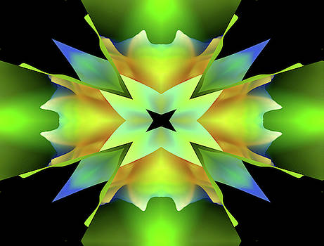 Star Burst - Abstract by Marie Jamieson
