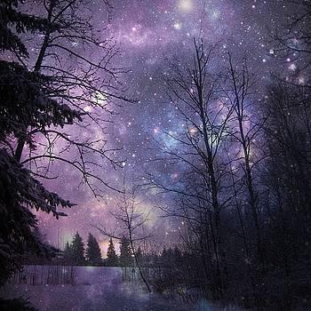 Star Lit Night by Shirley Sirois