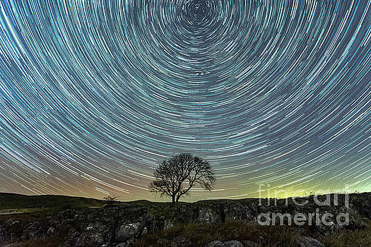 Star trails at the lonely tree on the limestone pavement by Mariusz Talarek