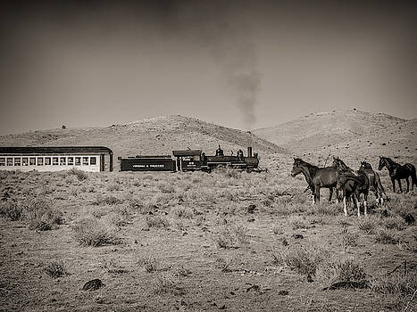 Steam Train and Wild Horses by Martin Gollery