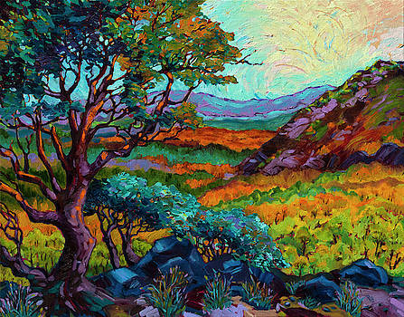 Steens Mountain Color by Rebecca Baldwin