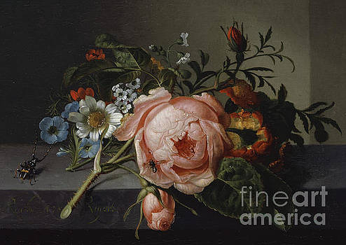 Rachel Ruysch - Still Life with Rose Branch, Beetle and Bee, 1741