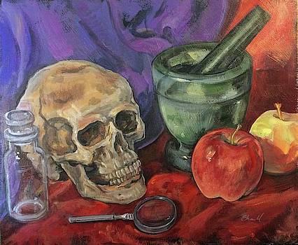 Still Life With Skull by Sherrie Miller