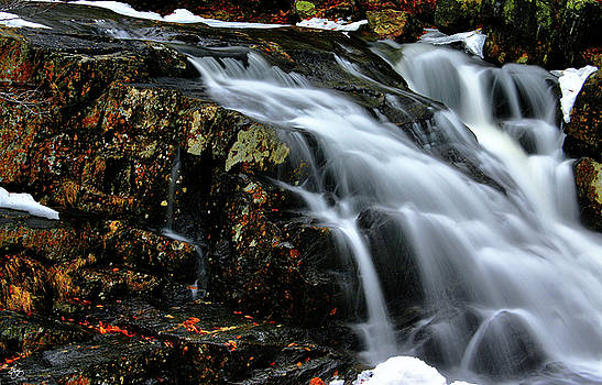 Stinson Brook Falls Colors by Wayne King