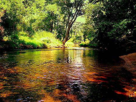 Henryk Gorecki - Stone River-Kamienna