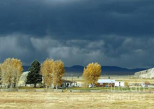 Storm Brewing by Rosanne Licciardi