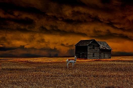 Bryan Smith - Storm