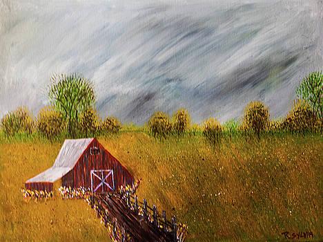 Storm Coming by Randy Sylvia