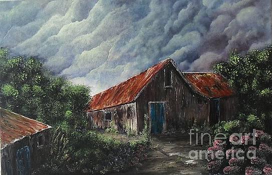 Storm coming up by Lia Van Elffenbrinck