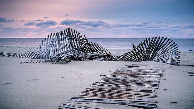 Storm Fence Sunrise by Steve Stanger