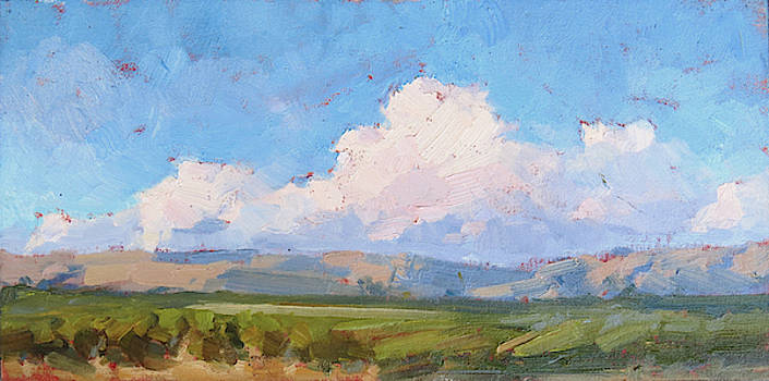 Storm over Livermore Hills by Steven McDonald