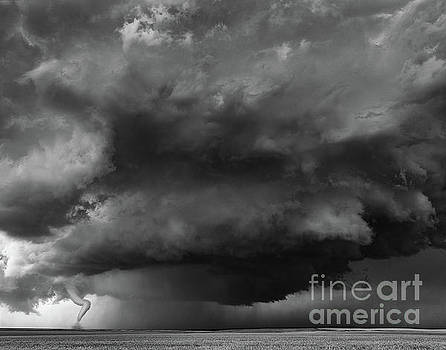 Storm Structure by Patti Schulze