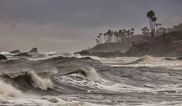 Cliff Wassmann - Storm Swell North Laguna