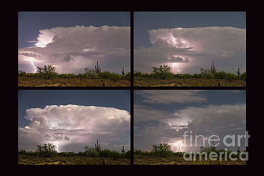 Storming Sonoran Desert by James BO Insogna