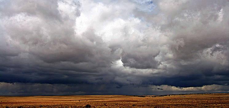 Natural Abstract Photography - Storm