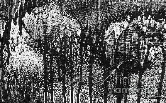 Storybook Forest Black and White 300 by Sharon Williams Eng