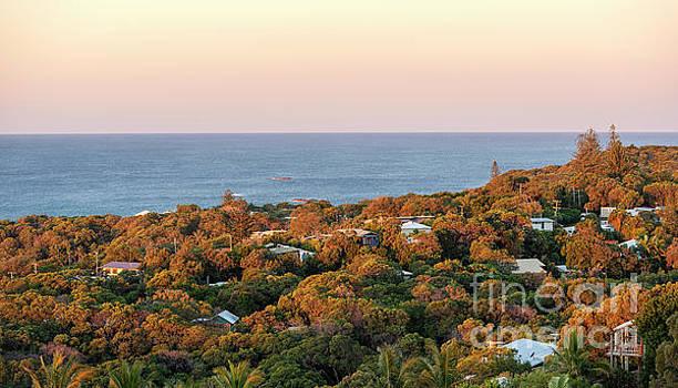 Tim Hester - Stradbroke Island Queensland Australia