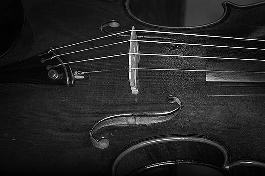 Strings Series 47 by David Morefield
