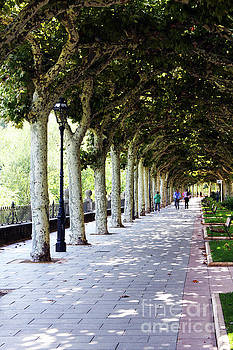 Strolling the Burgos Boulevard by Rick Locke