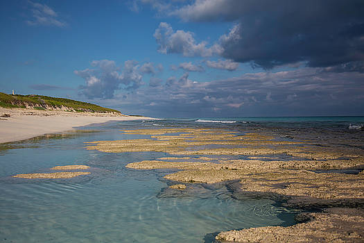 Stromatolites on Stocking Island by Thomas Kallmeyer
