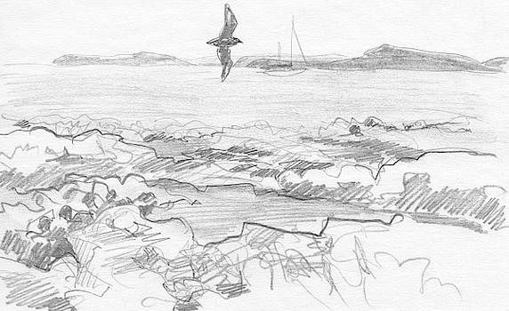 Subantarctic Island by Abby McBride
