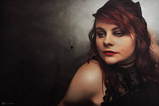 Such a Tangled Web She Weaves by Jeremy Martinson