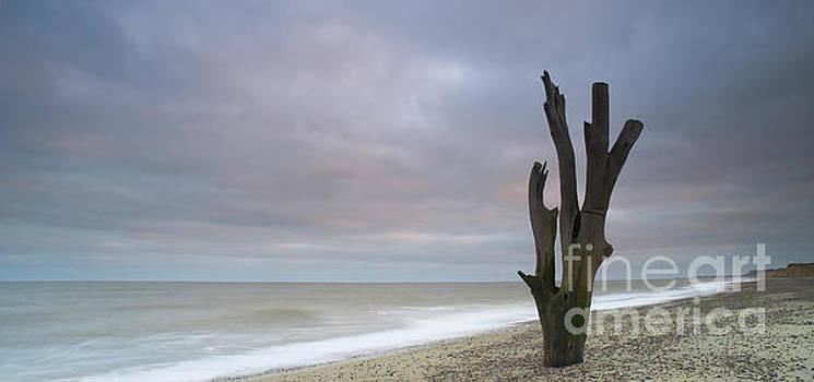 Suffolk coast at dusk by Colin Roberts