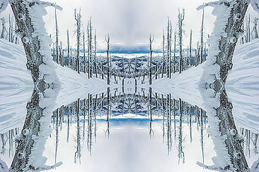 Pelo Blanco Photo - Sugarloaf Peak Reflection