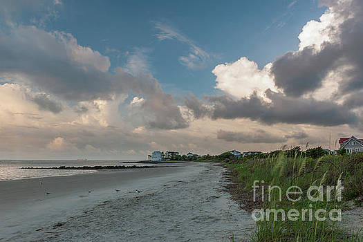 Summer Beach Days - Charleston SC by Dale Powell