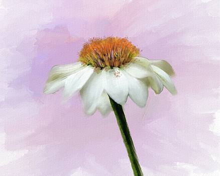 Summer Cone Flower by Mary Timman