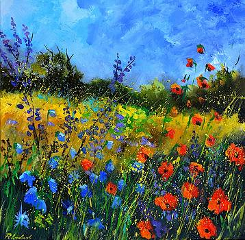 Summer field flowers by Pol Ledent