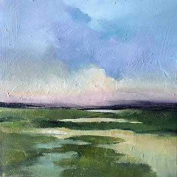 Summer Marsh by Filomena Booth