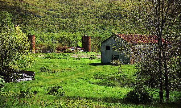 Summer On The Farm by Karol Livote