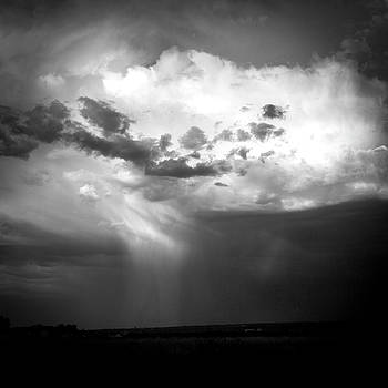 Summer Rain by Howard Holley