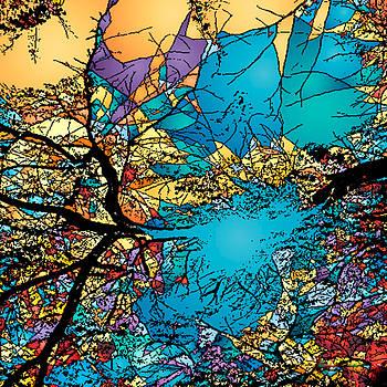 Summer Sky by Lucas Boyd