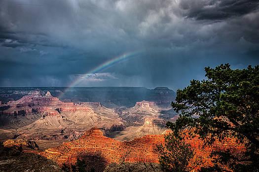 Summer Storm by John Wilkinson