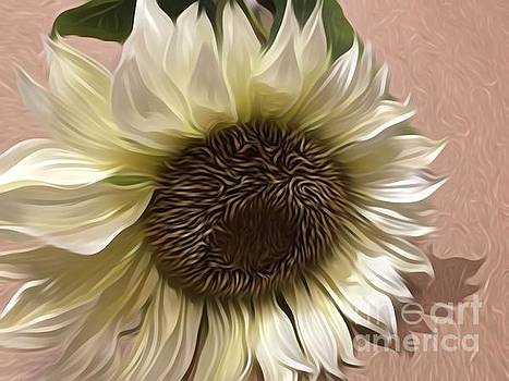 Summer Sunflower by Jeannie Rhode